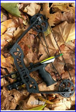 16 Mini Compound Bow Set 35lbs Archery Arrow Bowfishing Hunting Right Left Hand