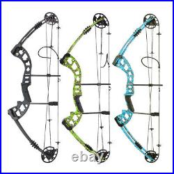 30-60lbs Compound Bow Arrows Kit Archery Fishing Hunting Adult Target Shooting