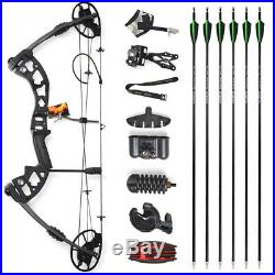 Archery Compound Bow Kit 30-70lbs Arrows Sight Stabilizer Bow Hunting Shooting